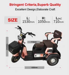 Electric Tricycle 3 Wheel Electric Leisure Scooter Battery Tricycle MODEL 3.0 25km/h ABS electronic brakes